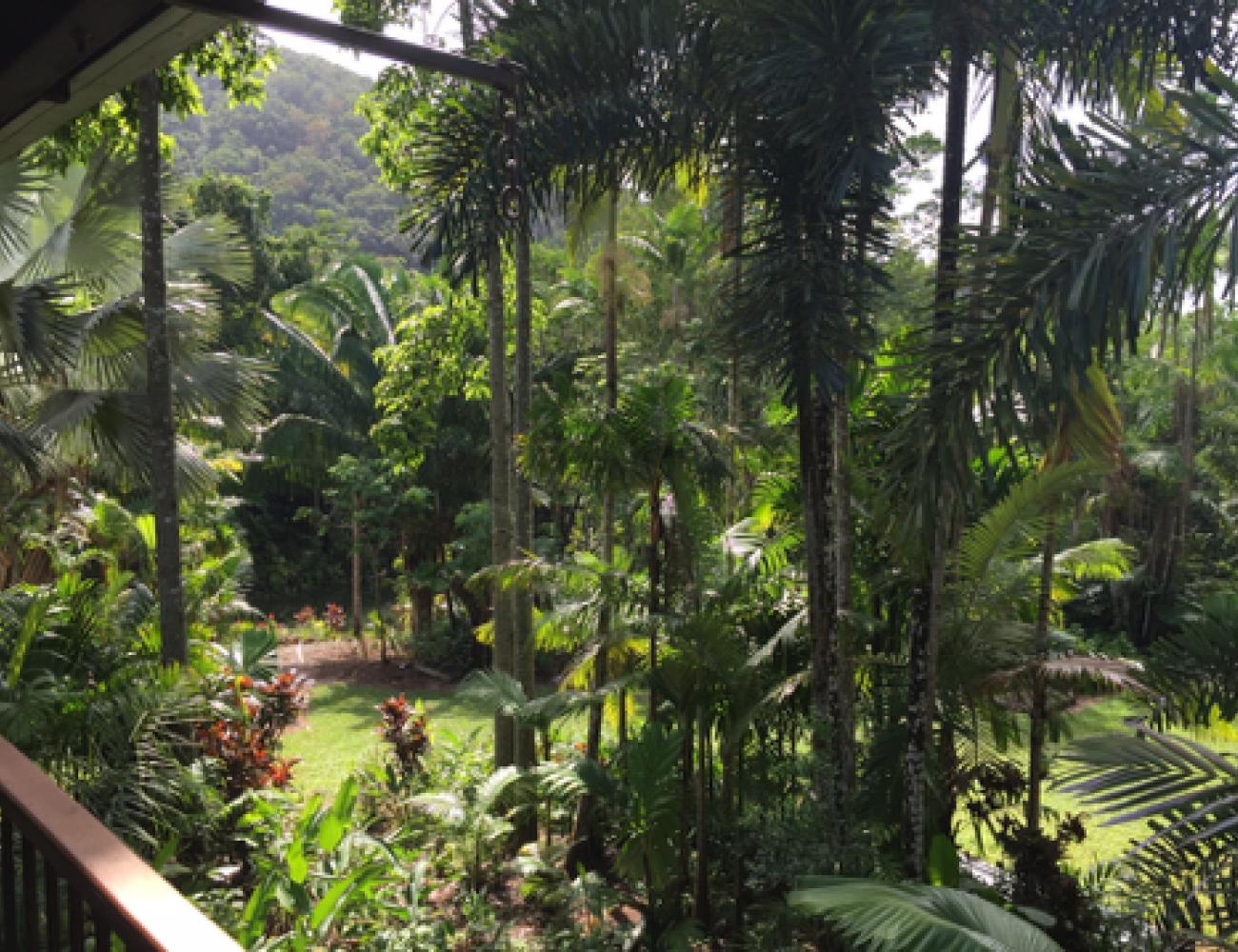 Villa Zena - Garden 003